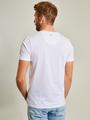 Chief T-shirt Korte Mouwen PC910501 Wit